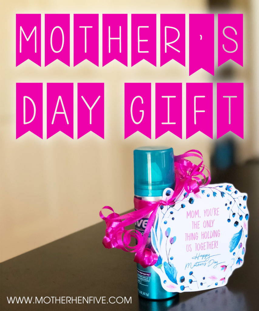 Mother S Day Gift Mother Hen Five