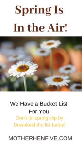 spring, bucket list, goals, flowers, dyi, spring activities, goals, camping, kites, fishing, day trip, rain, picnic, walking,
